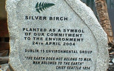 Silver Birch Sunken Panel